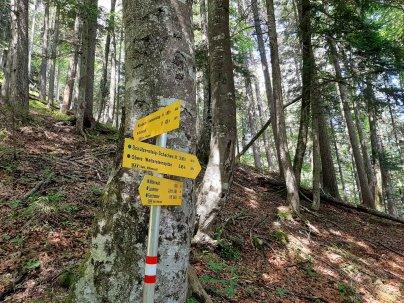 Oder doch den kleinen Spaziergang zur Oberen Wettersteinspitze?