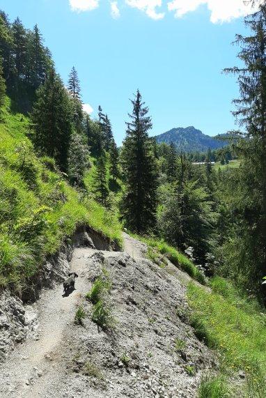 Im Mittagsgrauen zu Berge wir ziehn...