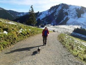 Herr und Hund auf dem Weg zum Wallberg.